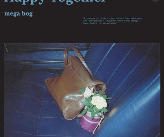 Mega-Bog-HappyTogether_Small